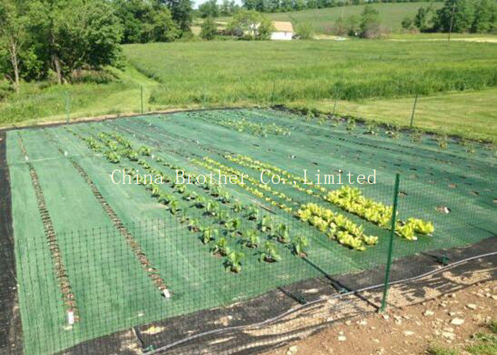 Black Air Permearble PP Woven Fabric Agriculture Cover / Ground Protection Mat